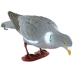 Mold of Pecking Pigeon