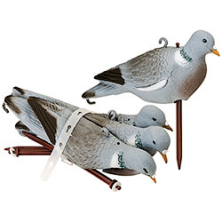 Set of Wood-Pigeon Molds