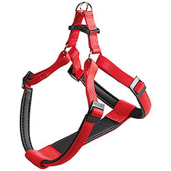 Chest Harness Daytona Extra Large Red