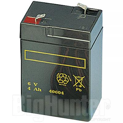 Batteria ricaricabile 6 Volt