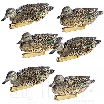 Set 6 Stampi Alzavola Femmina Pro-Grade Greenhead Gear