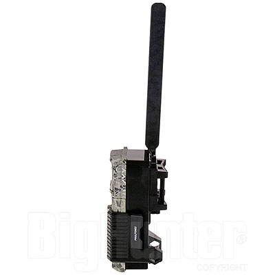 Fototrappola Spypoint Link-Micro Cellular Trail Camera