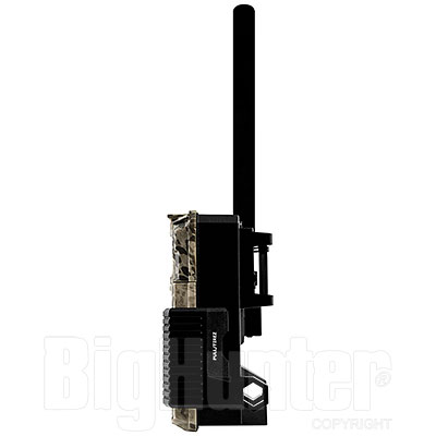 Fototrappola Spypoint Link-Micro-LTE Cellular Trail Camera