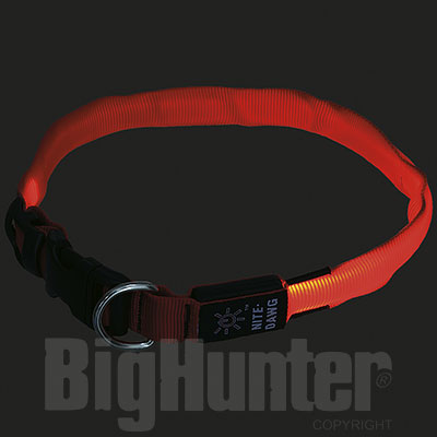 Collare per cani Luminoso Nite Dawg Large