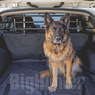 Divisorio Auto per cani Dog Car Security Ferplast