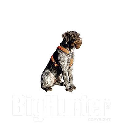 Pettorina per cani Niggeloh Follow Orange Green Size L