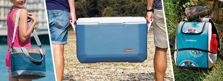 frigoriferi: ghiacciaie e borse termiche